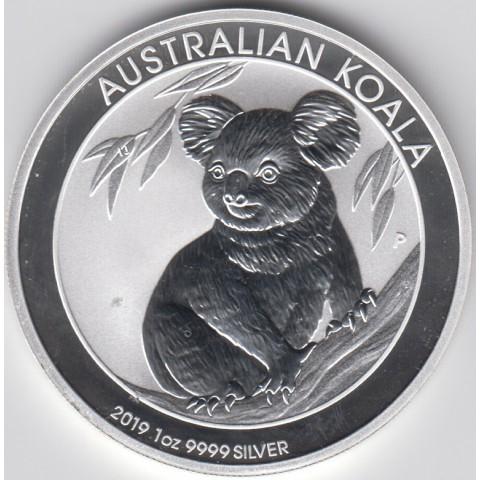 2019. Onza Australia. Koala