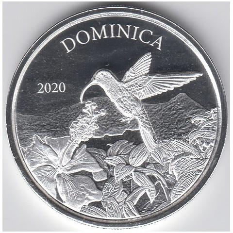 2020. Onza Caribe. Colibri